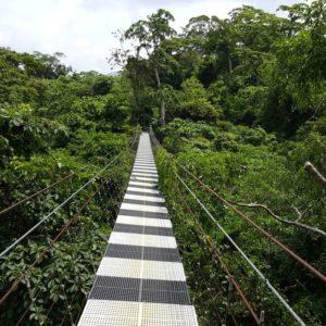 Costa Rica Terrazzo